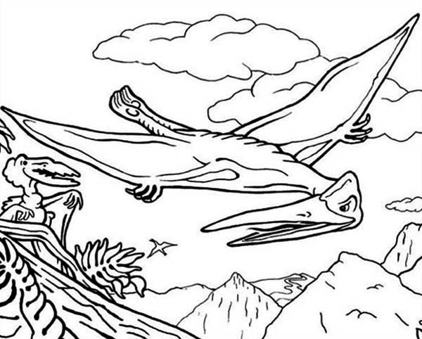 Pteranodon, : Pteranodon the Flying Reptile Coloring Page
