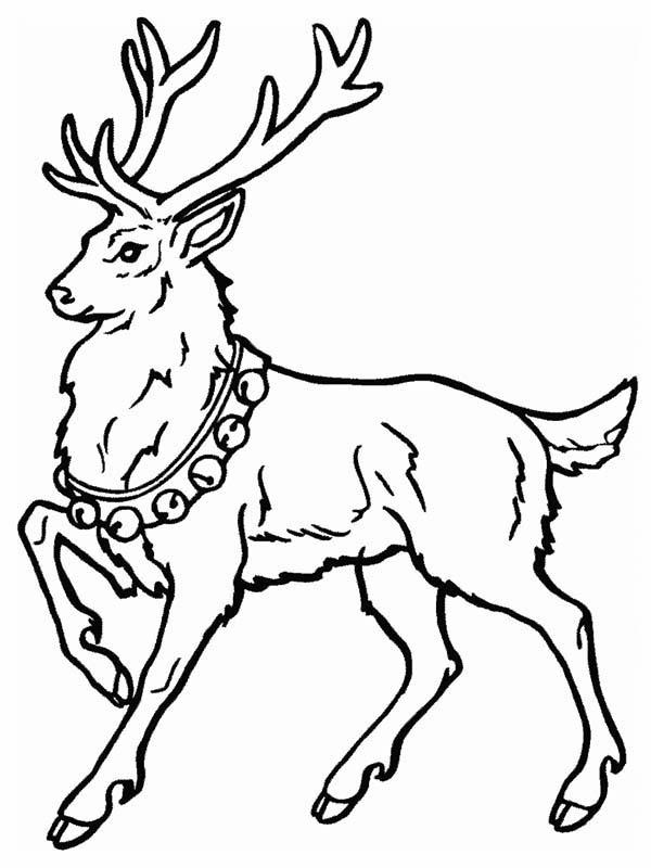 Deer, : Santa Claus Deer Coloring Page