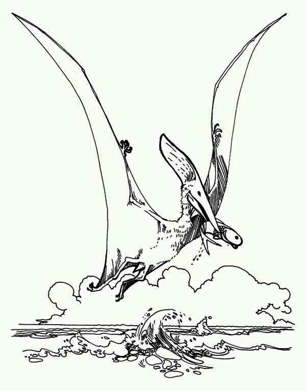 Pteranodon, : Sea Hunter Pteranodon Coloring Page