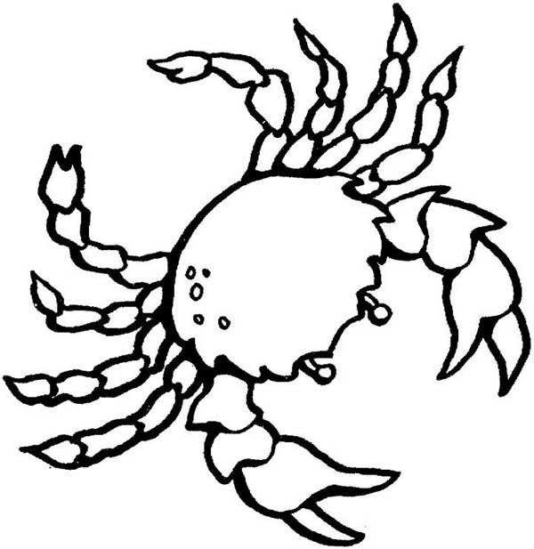 Crab, : Symbol of Cancer Zodiac Crab Coloring Page