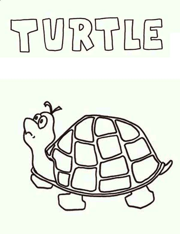 Turtle, : T is for Turtle Coloring Page