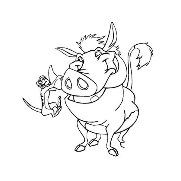 Timon and Pumbaa, : Timon Hanging on Pumbaa Tusk in Timon and Pumbaa Coloring Page