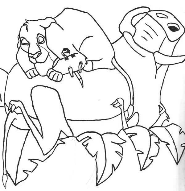 Timon and Pumbaa, : Timon and Pumbaa Sleeping Together with Simba Coloring Page