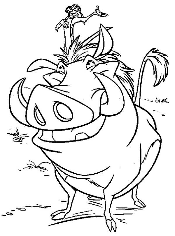 Timon and Pumbaa, : Timon and Pumbaa is Best Friend Coloring Page