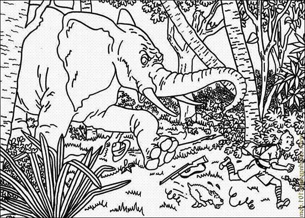 Tintin, : Tintin and Snowy Run from Mad Elephant Coloring Page