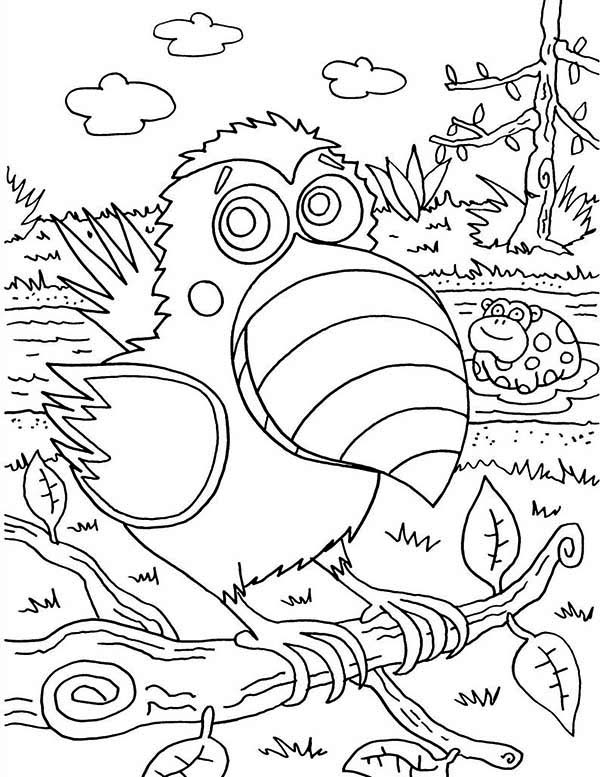 Toucan, : Toucan and Dotty Coloring Page