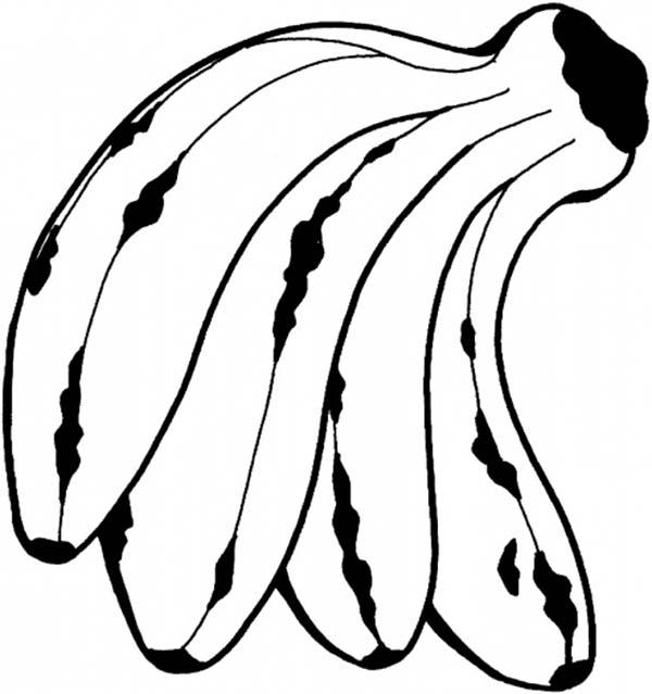 Banana, : Tropical Fruit Banana Coloring Page