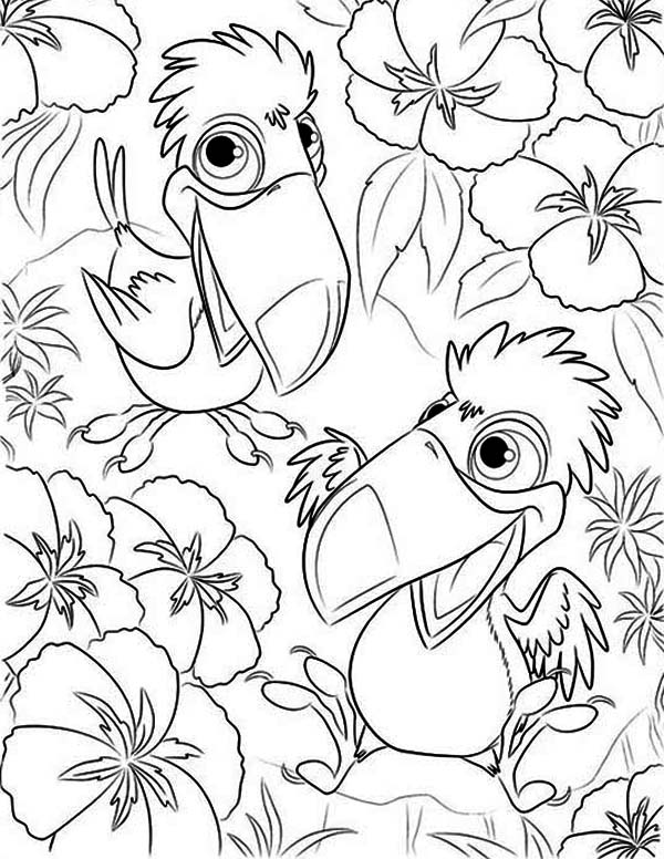 Toucan, : Two Little Toucan Coloring Page