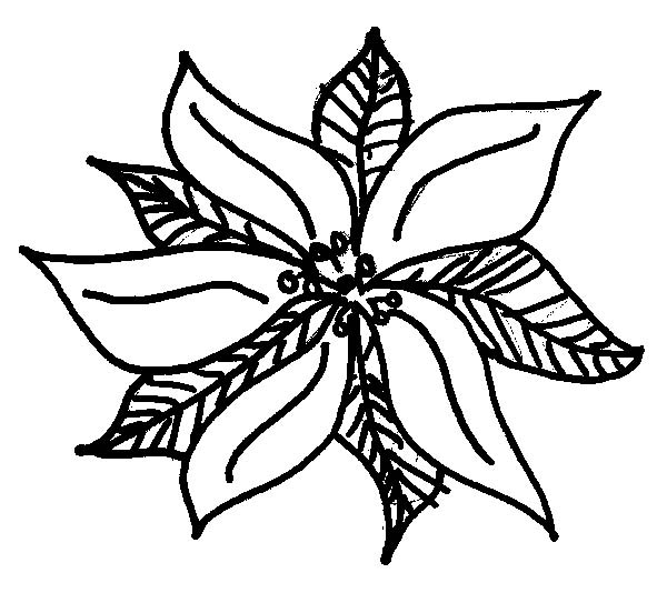 Poinsettia Day, : Cute Poinsettia Sketch for Poinsettia Day Coloring Page