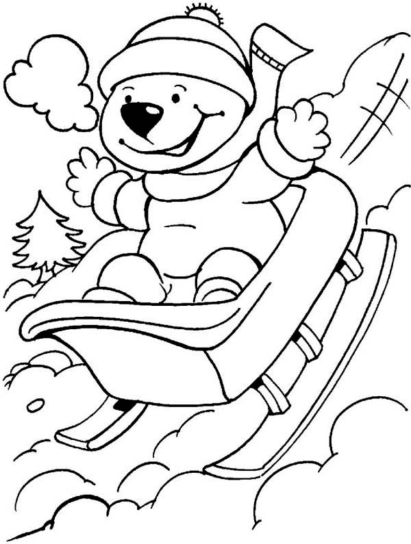 Winter Season, : Lovely Bear Playing Winter Season Sleigh Coloring Page