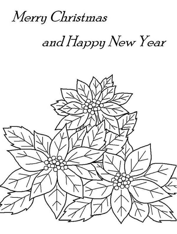 Poinsettia Day, : Merry Christmas and Happy New Year with Poinsettia Flower Coloring Page