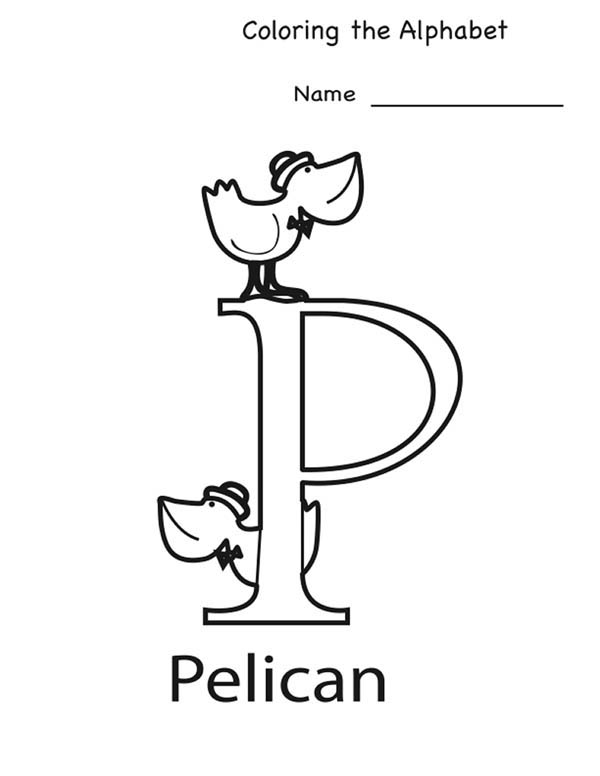 Letter p, : Alphabet Coloring Page for Pelican