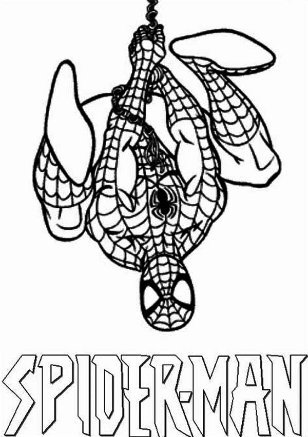 amazing spiderman coloring pages - spiderman catch dr octopus with his spidernet coloring