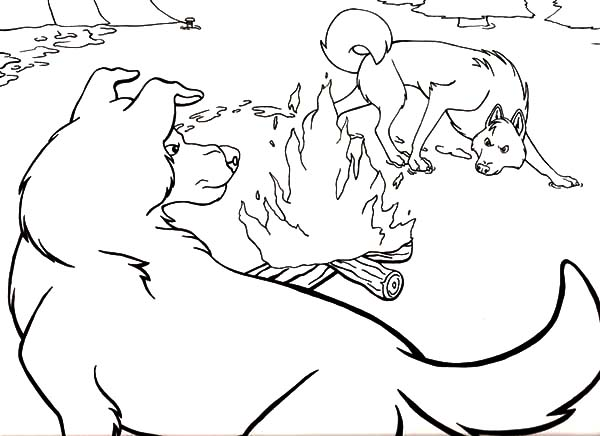 The Wild, : Call of the Wild Coloring Pages