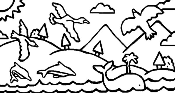Days Creation, : Days of Creation Animals Coloring Pages