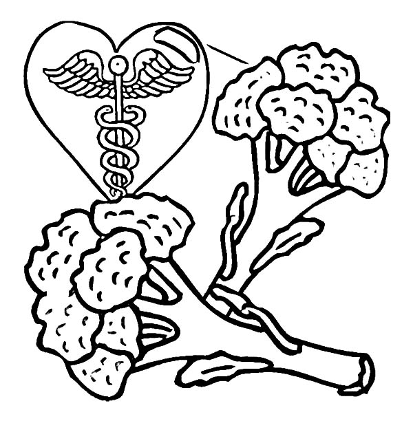 Healthy Eating, : Eating Broccoli is Healthy Food Coloring Pages