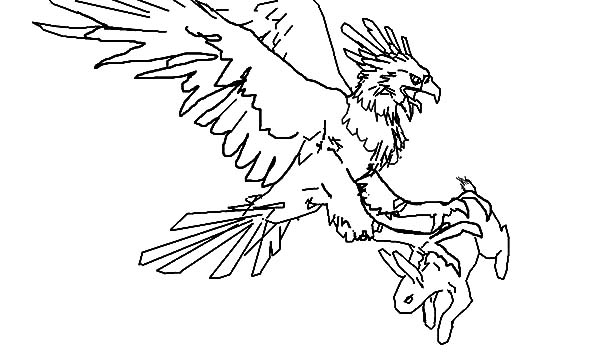 Harpy Eagle, : Hapy Eagle Grab a Bunny Coloring Pages