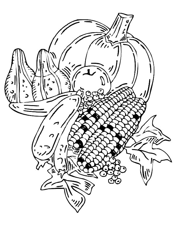 Harvests, : Harvests Crop from Fields Coloring Pages