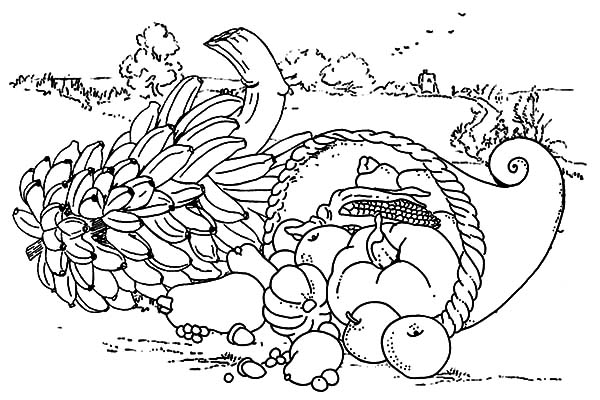 Harvests, : Harvests Delicious Fruit Coloring Pages