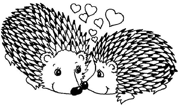Hedgehog, : Hedgehog Couple in Love Coloring Pages