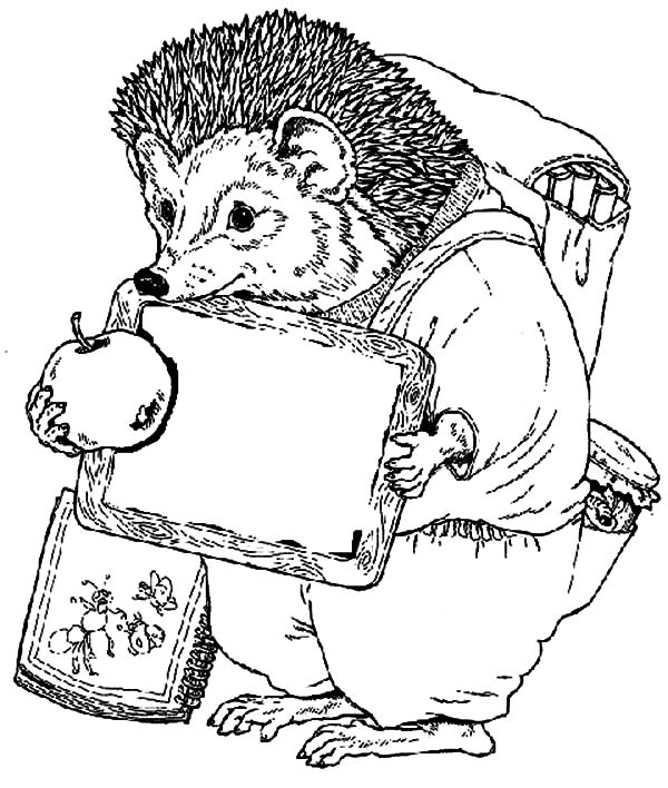Hedgehog, : Hedgehog Student Going to School Coloring Pages