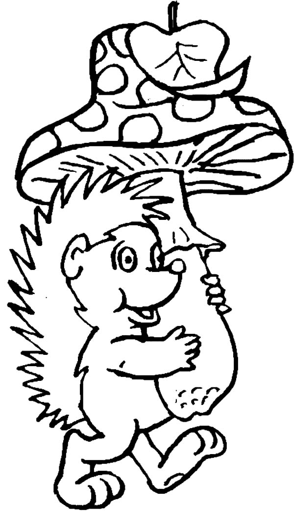 Hedgehog, : Hedgehog and Big Mushroom Coloring Pages