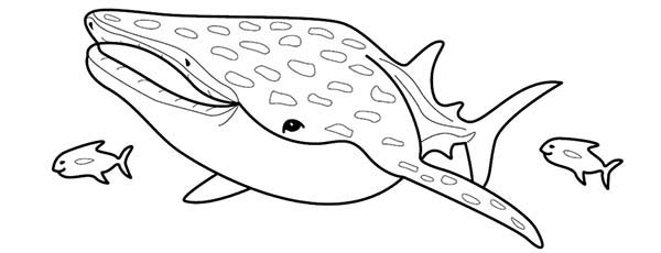 Manta Ray, : Manta Ray Coloring Page (2)