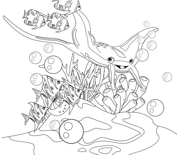 Manta Ray, : Manta Ray and Little Fish Coloring Pages