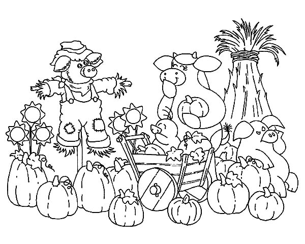 Harvests, : Pumpkin Harvests Coloring Pages
