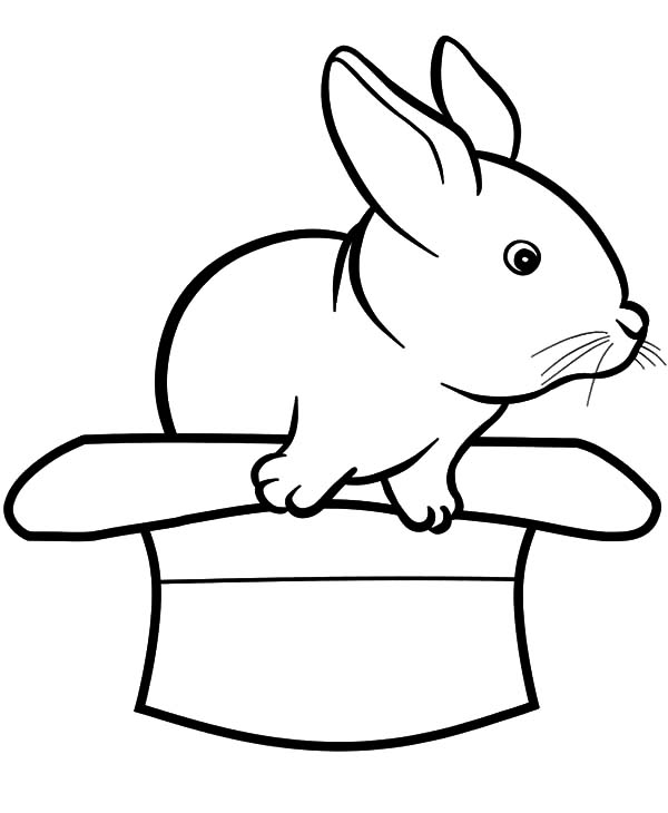 Hat, : Rabbits Come Out from a Hat Coloring Pages