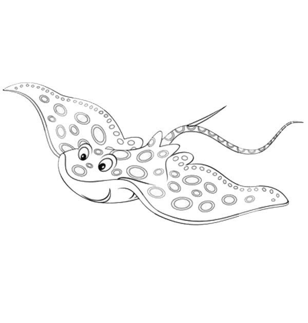 Manta Ray, : Smiling Manta Ray Coloring Pages