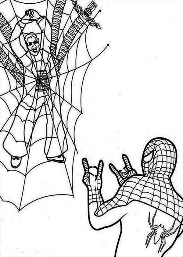 Spiderman, : Spiderman Catch Dr Octopus with His Spidernet Coloring Page