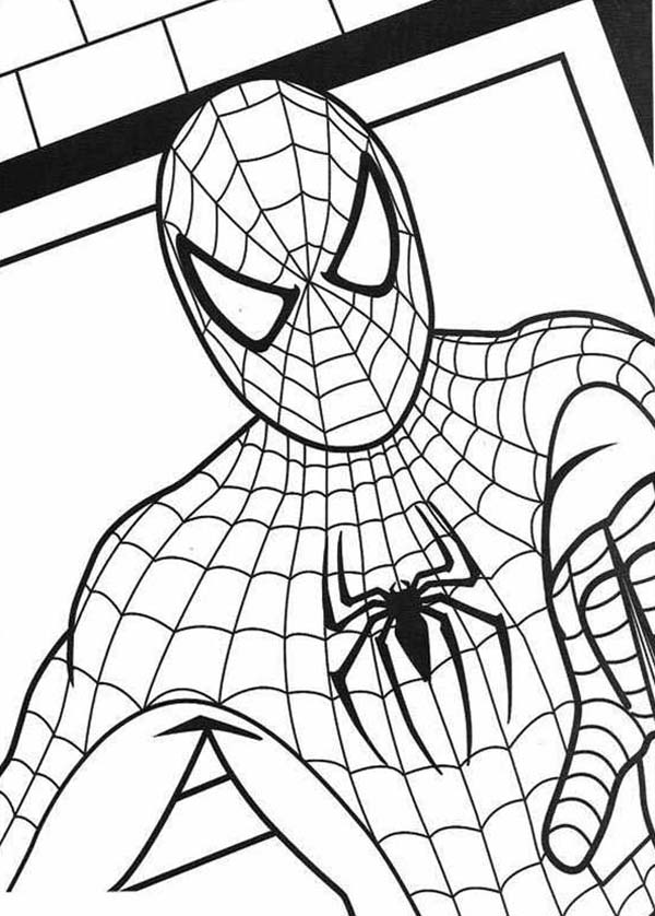 Spiderman, : Spiderman Drawing Coloring Page