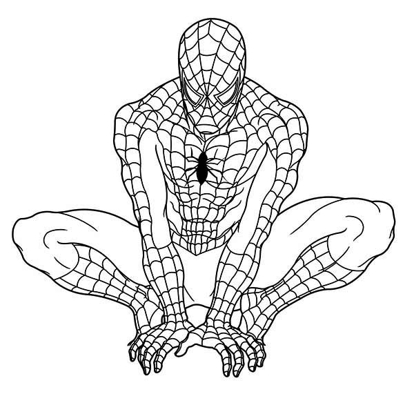 spiderman at the seaside coloring page  spiderman at the