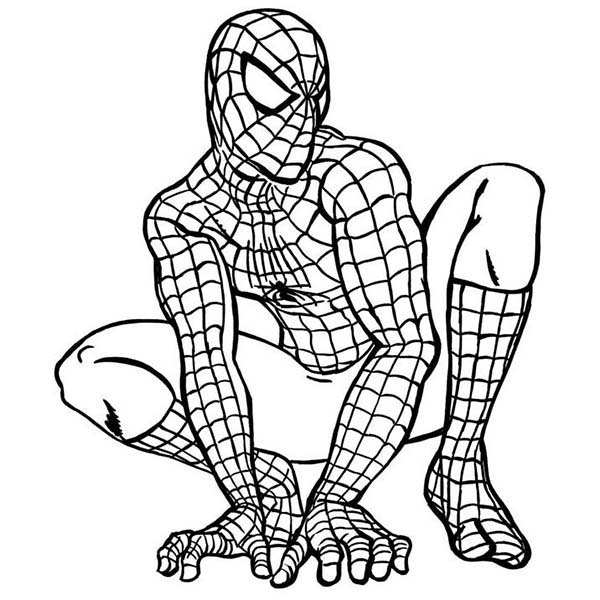 Spiderman, : Spiderman The American Hero Coloring Page