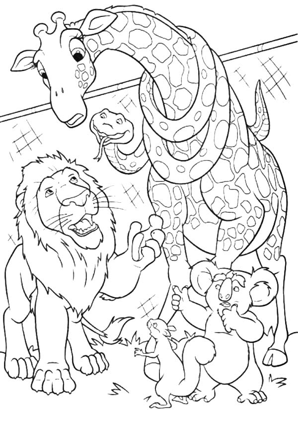 The Wild, : The Wild Making Plans Coloring Pages