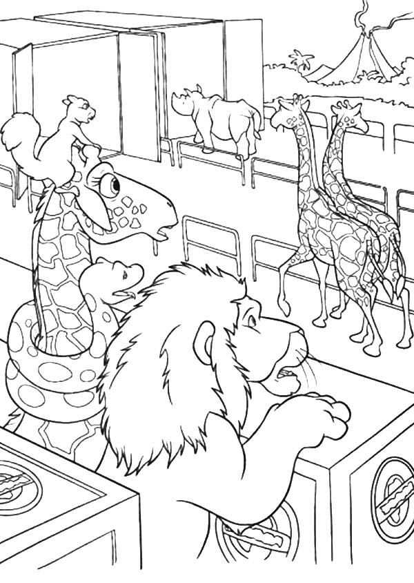 The Wild, : The Wild Watch Other Animal Removed Coloring Pages
