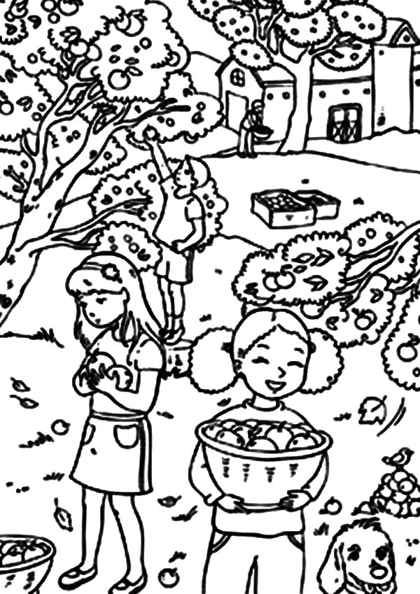 Harvests, : Three Little Girl Harvests Backyard Orange Coloring Pages